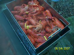 Basket full of lobsters in lobster steamer